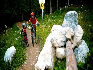 Lake.bike - Flowgartner Trail T25 - Der Mountainbike Flowtrail am Faaker See